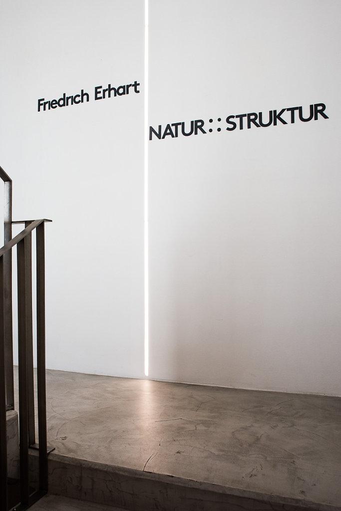 friedrich-erhart-salmgasse-14.jpg