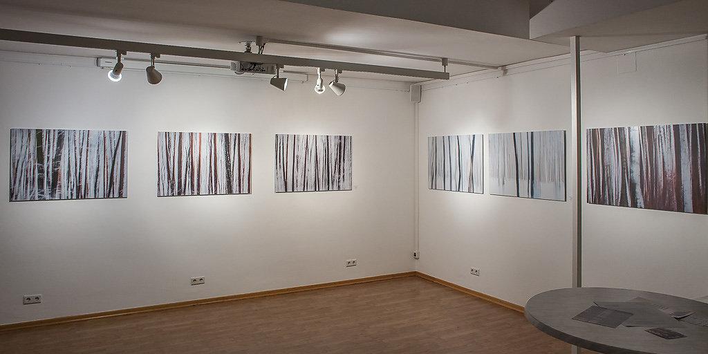 friedrich-erhart-pool7-galerie-2018-3.jpg